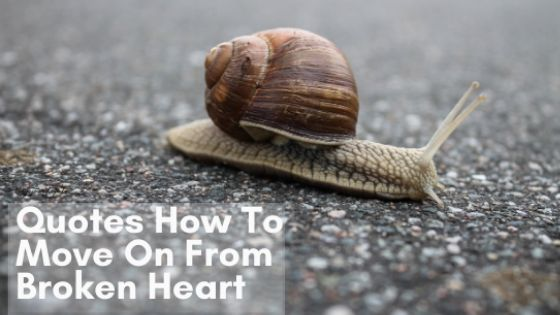 Quotes How To Move On from Broken Heart